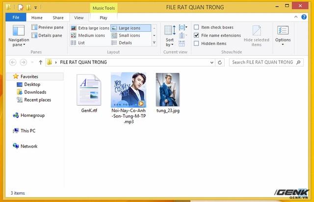 Chiếc PC được thử nghiệm chứa một số file rtf (tài liệu), mp3 (đa phương tiện) và jpg (ảnh). WannaCry lây nhiễm rất nhiều loại file khác nhau, chứa các dữ liệu quan trọng của người dùng