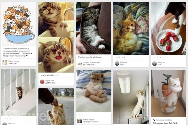 Pin thêm một số hình ảnh khác sẽ tạo sự đa đạng cho trang của bạn