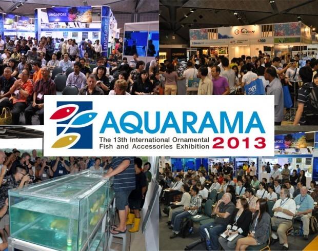 Hội chợ Aquarama tại Singapore về cá cảnh và các phụ kiện chăm sóc